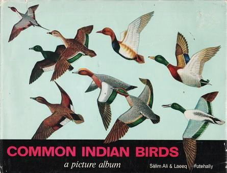 COMMON INDIAN BIRDS: A Picture Album. Salim Ali, Laeeq Futehally.