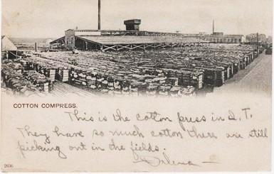 PHOTO-POSTCARD SHOWING HUNDREDS OF BALES OF COTTON OUTSIDE THE COTTON COMPRESS AT OKLAHOMA CITY. Indian Territory.