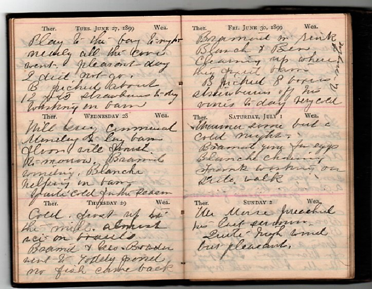 HANDWRITTEN DIARY OF 1899, WRITTEN MOSTLY IN A WOMAN'S HAND, FROM HOME IN PENOBSCOT, MAINE TO A WINTER AT ALTAMONTE SPRINGS, SEMINOLE COUNTY, FLORIDA. Samuel Brainard Condon, Family.