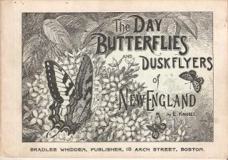 THE DAY BUTTERFLIES AND DUSKFLYERS OF NEW ENGLAND: How to Find and Know Them. Edward Knobel