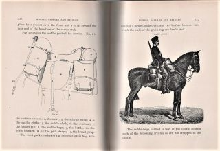 HORSES, SADDLES AND BRIDLES. By Captain William H. Carter, Sixth Cavalry, U.S. Army.