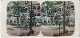 HAND-COLORED STEREOSCOPIC VIEW, CRYSTAL PALACE: THE GREAT PALM AND NINEVEH COURT. Tropical...